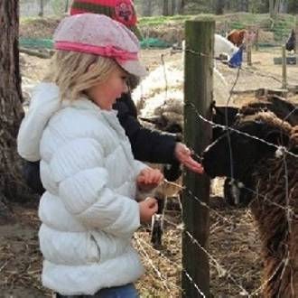 Arion Farm Education Park