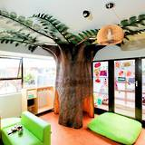 Fern Garden Preschool & Childcare Centre