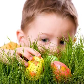 6 tips for organising an easter egg hunt negle Gallery